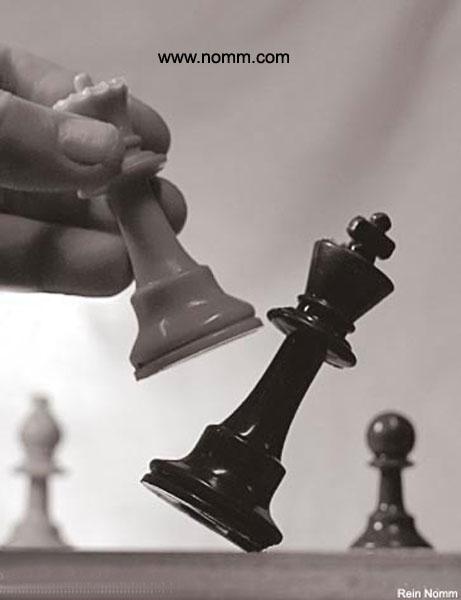 CheckmateD Bahas Tuntas Bermain Catur